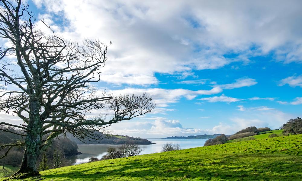 A view looking towards Carrick Roads on the river Fal in Cornwall, England, UK