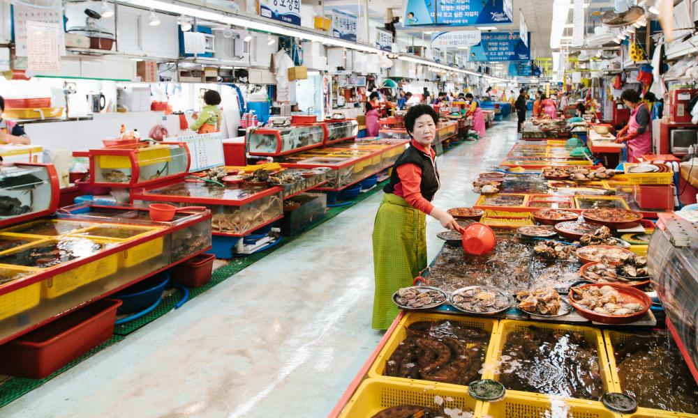 The fish market in Busan.