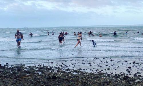 Win, win … the Gosport group enjoy an early splash after a walk.
