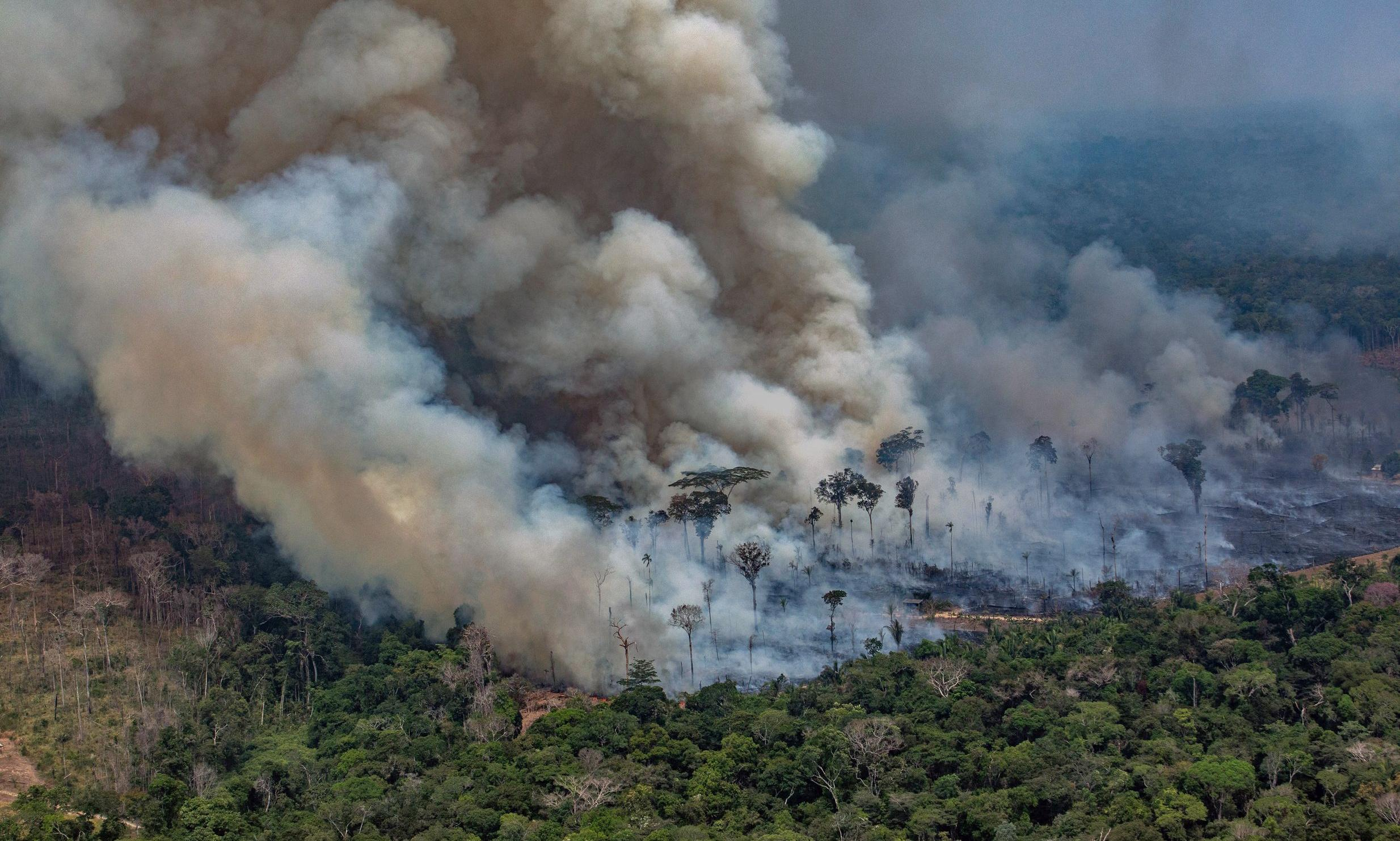 Fires are devouring the Amazon. And Jair Bolsonaro is to blame