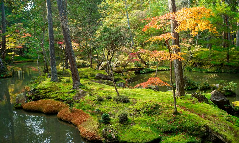 Saiho-ji or the Moss Temple, Kyoto