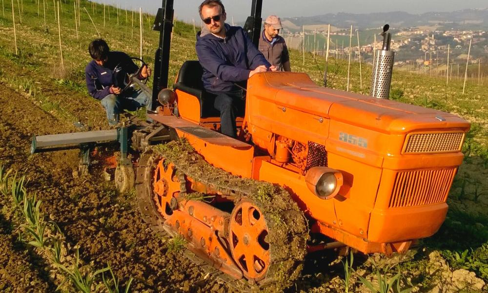 Alessandro Guagni at work on the farm