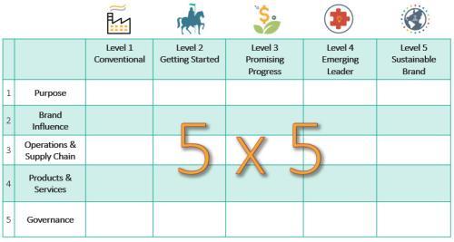 5x5 matrix showing The SB Brand Transformation Roadmap