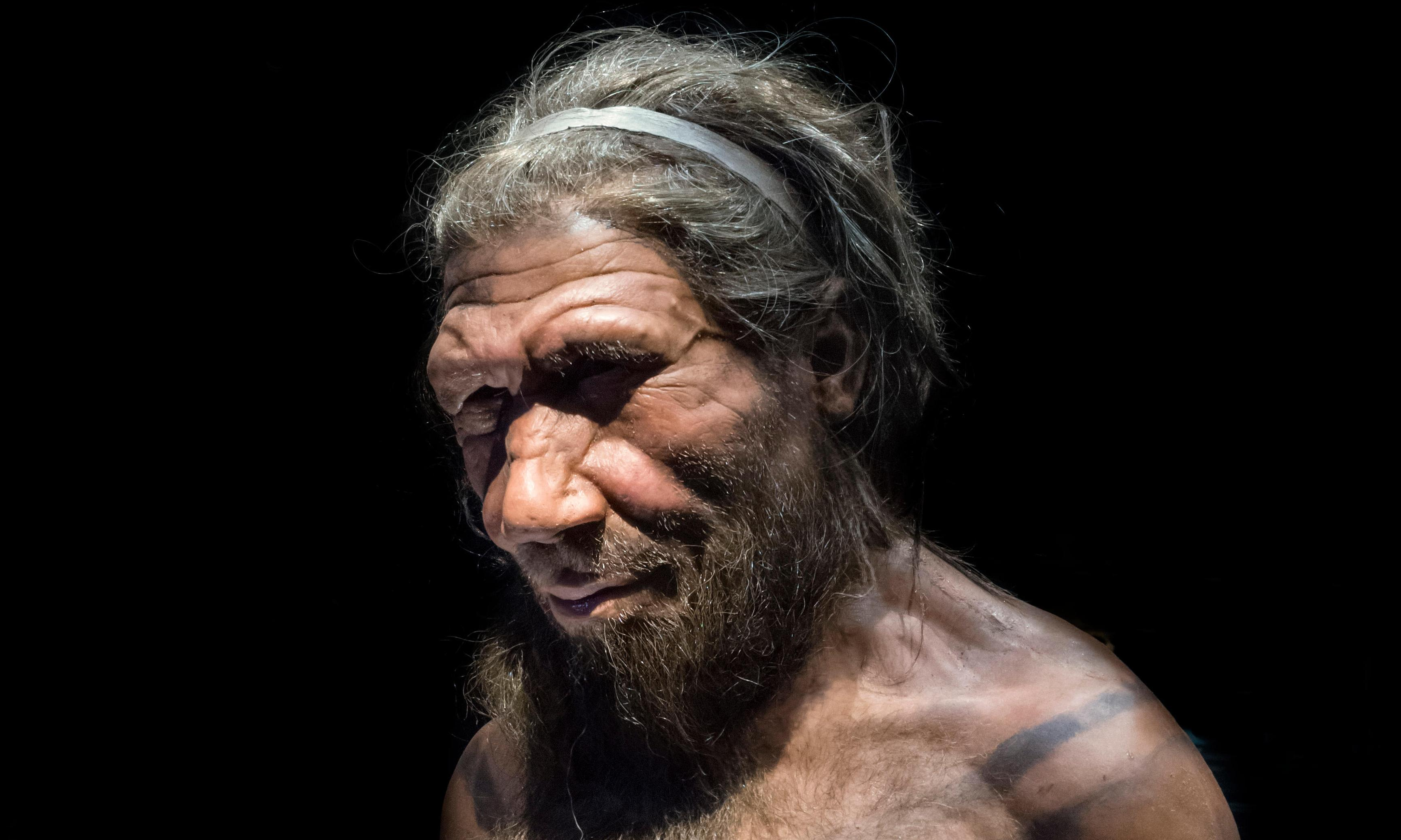 Bad luck may have caused Neanderthals' extinction – study