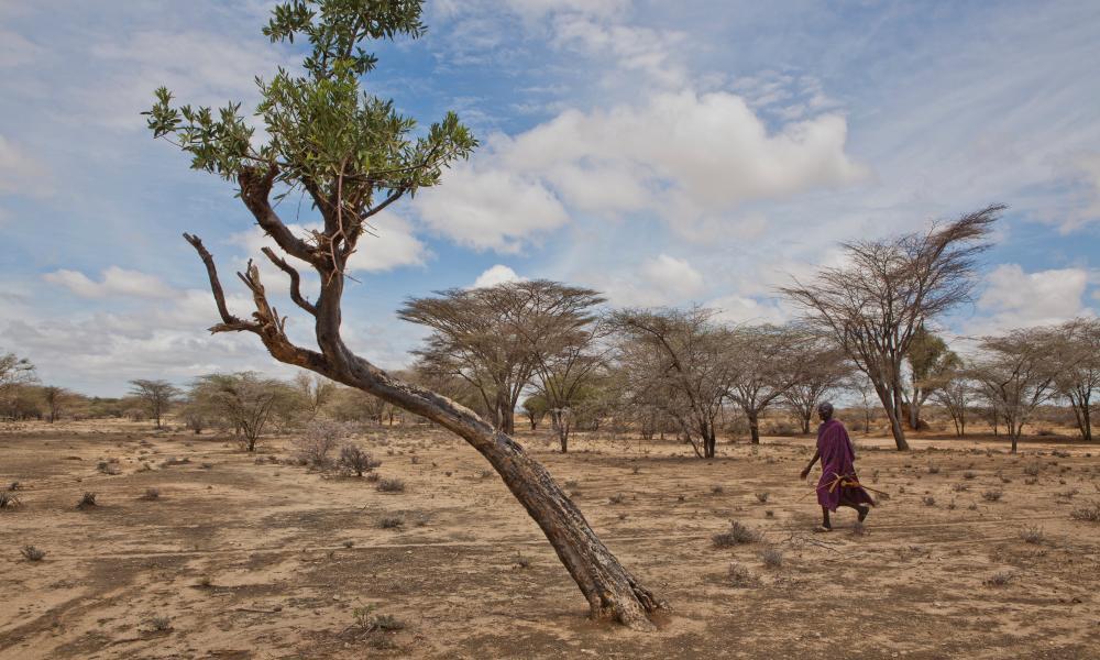 A man crosses arid land in western Turkana, Kenya
