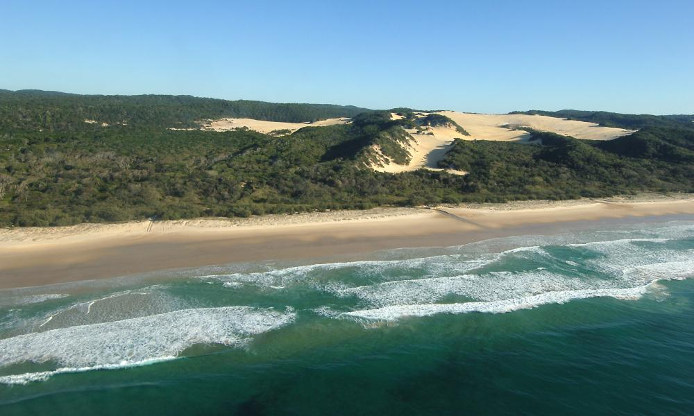 World Heritage-listed Fraser Island is a unique natural environment that has developed over 800,000 years.— It is the largest sand island in the world and one of the rare places where rainforest grows on sand.