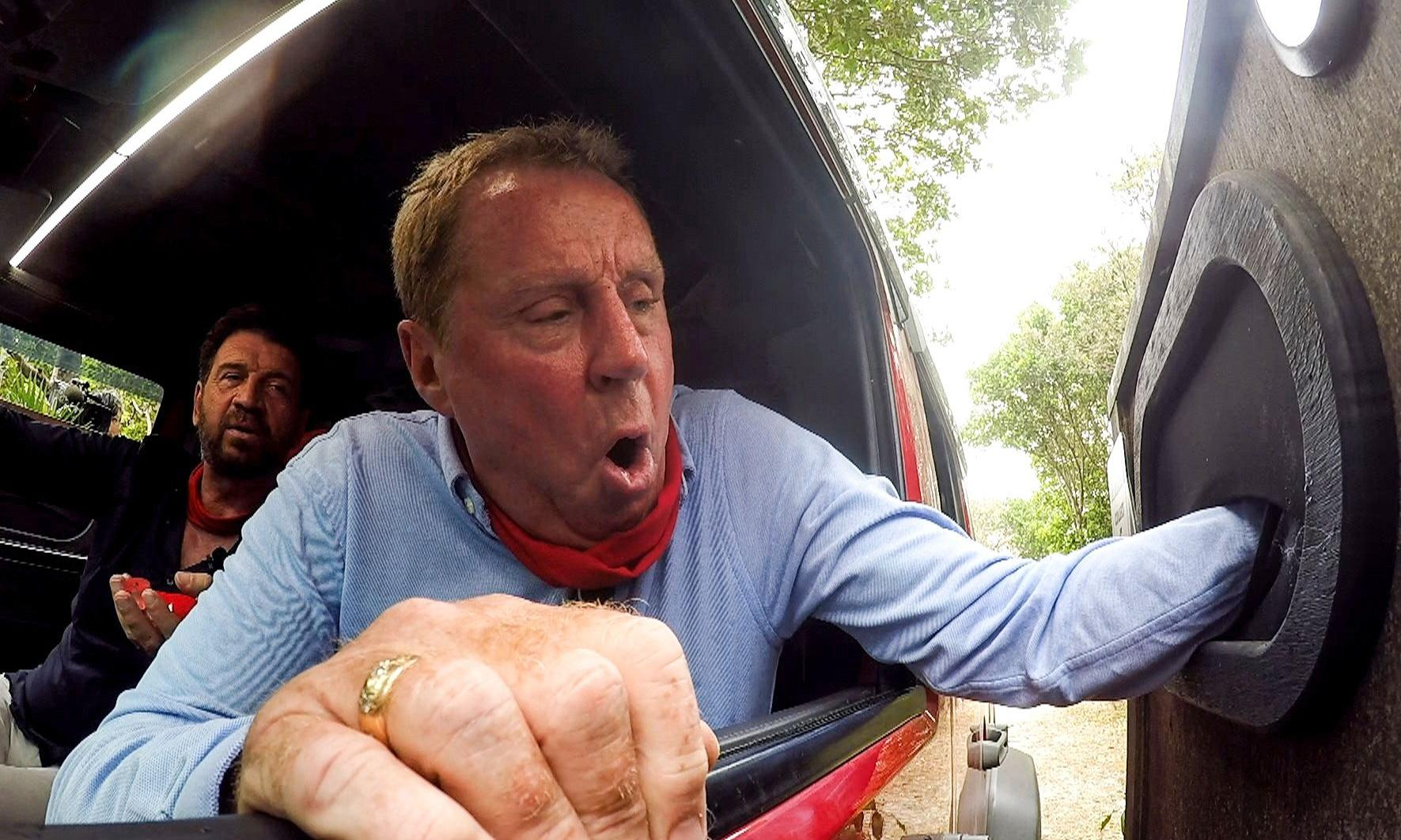 Harry Redknapp sets out tactics in crab-stroking I'm A Celebrity debut