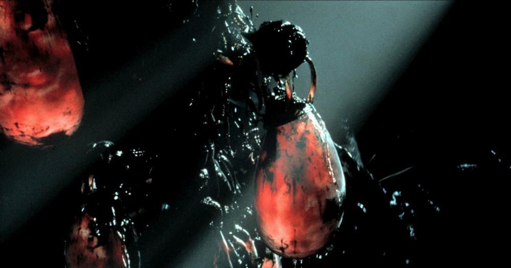 Human batteries … The Matrix.