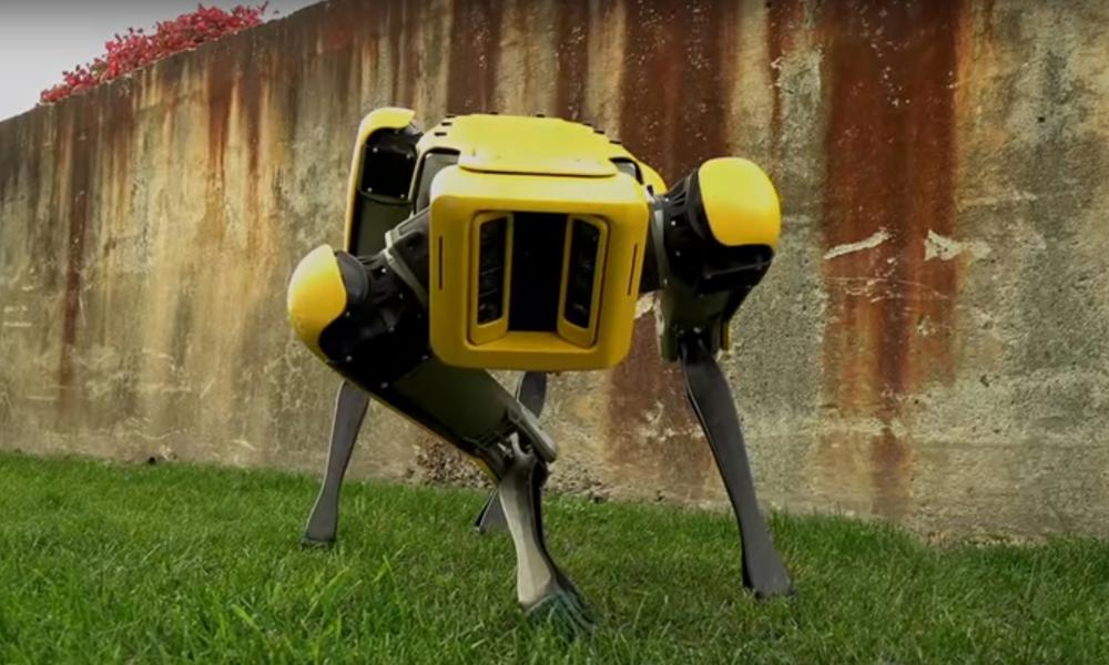 Boston Dynamics SptMini robot