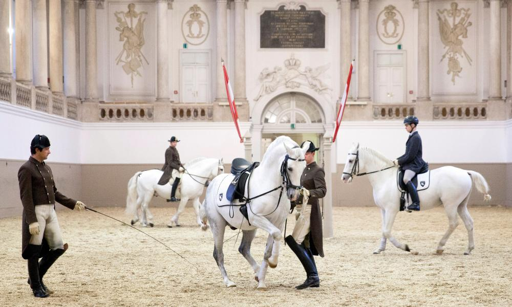 spanish riding school essay » the spanish riding school (practice session) at theâ spanish riding school are based on applicable today and in his essay 'on horsemanshipâ.