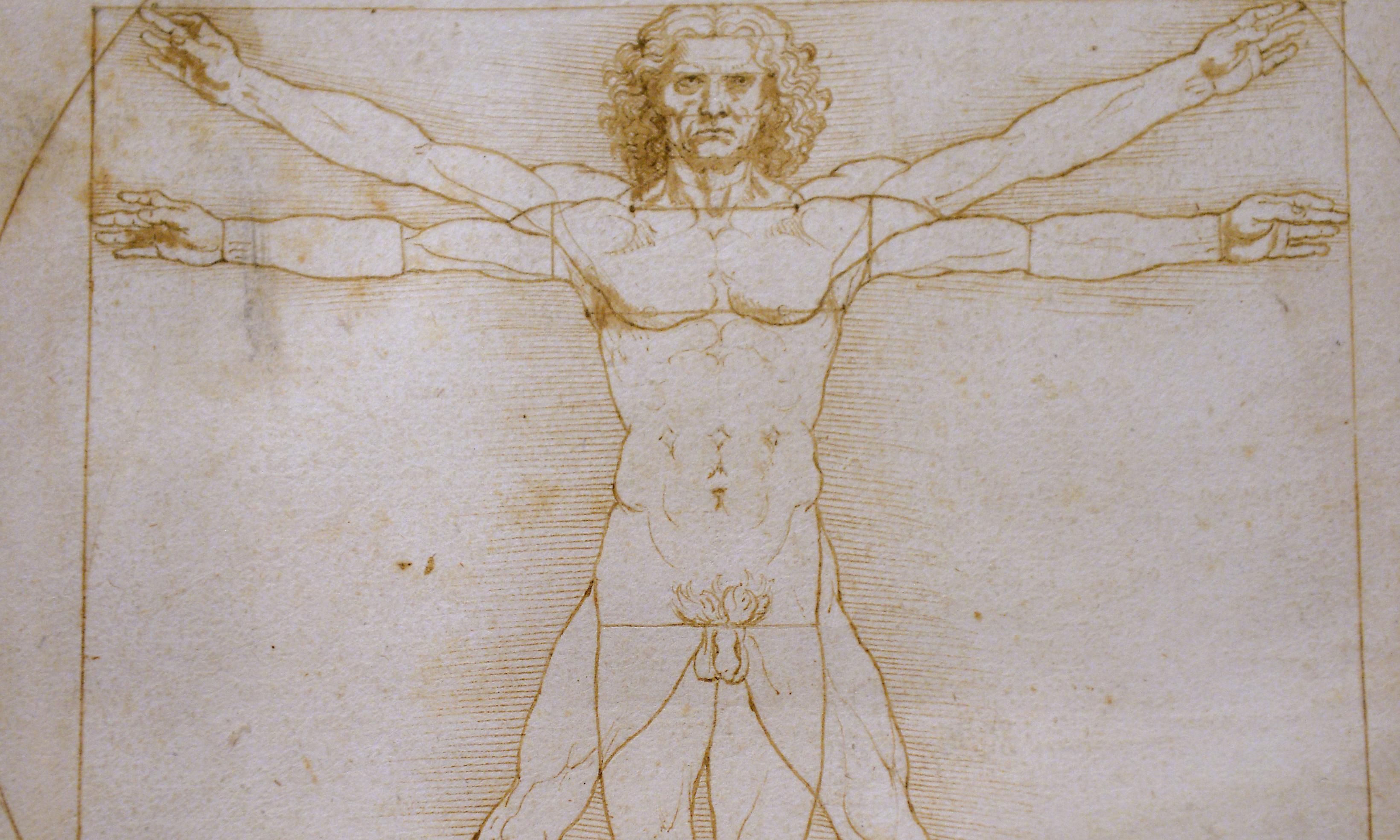 Leonardo da Vinci work 'too fragile' to be transported to France
