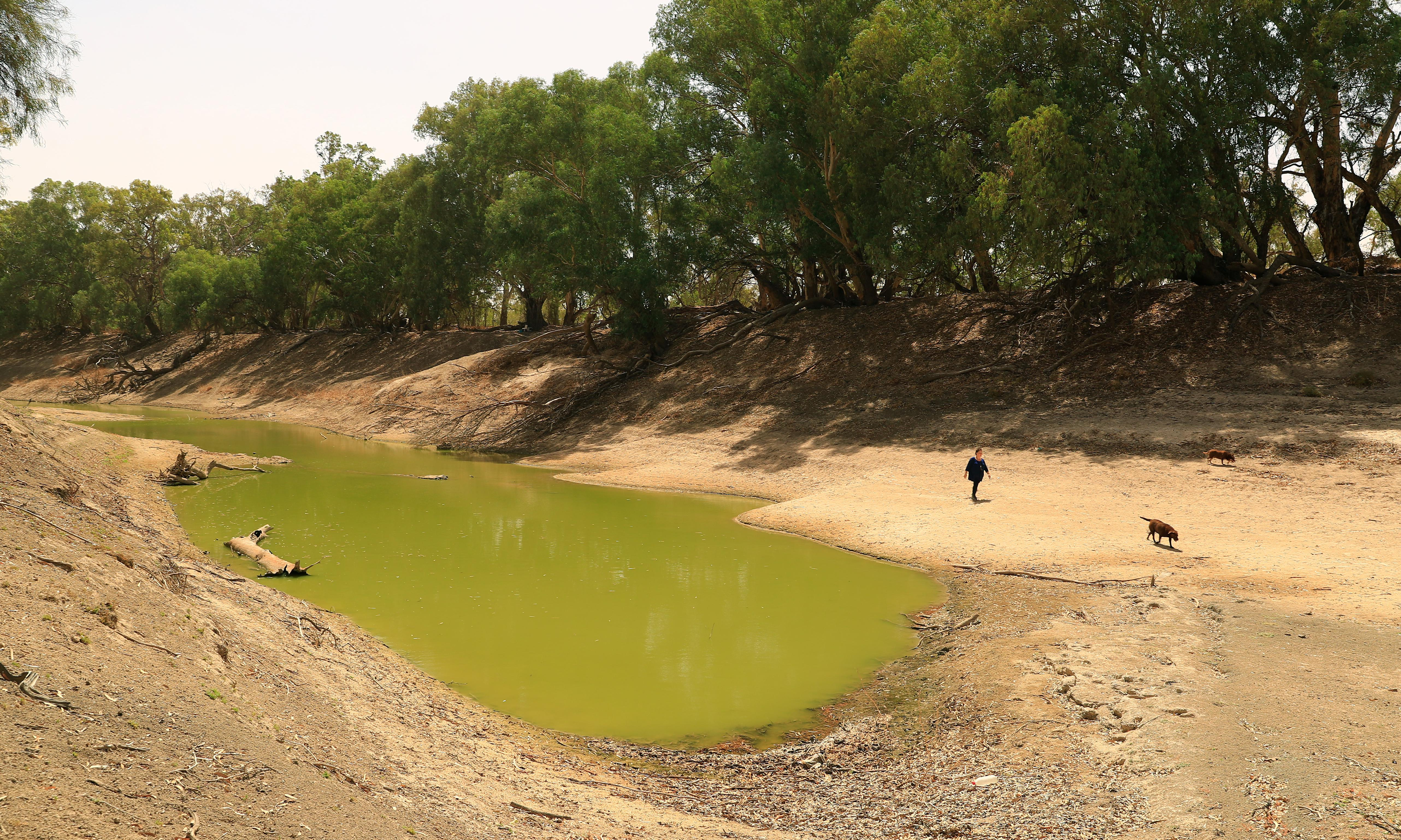 Murray-Darling Basin: water ministers agree to independent umpire to police plan