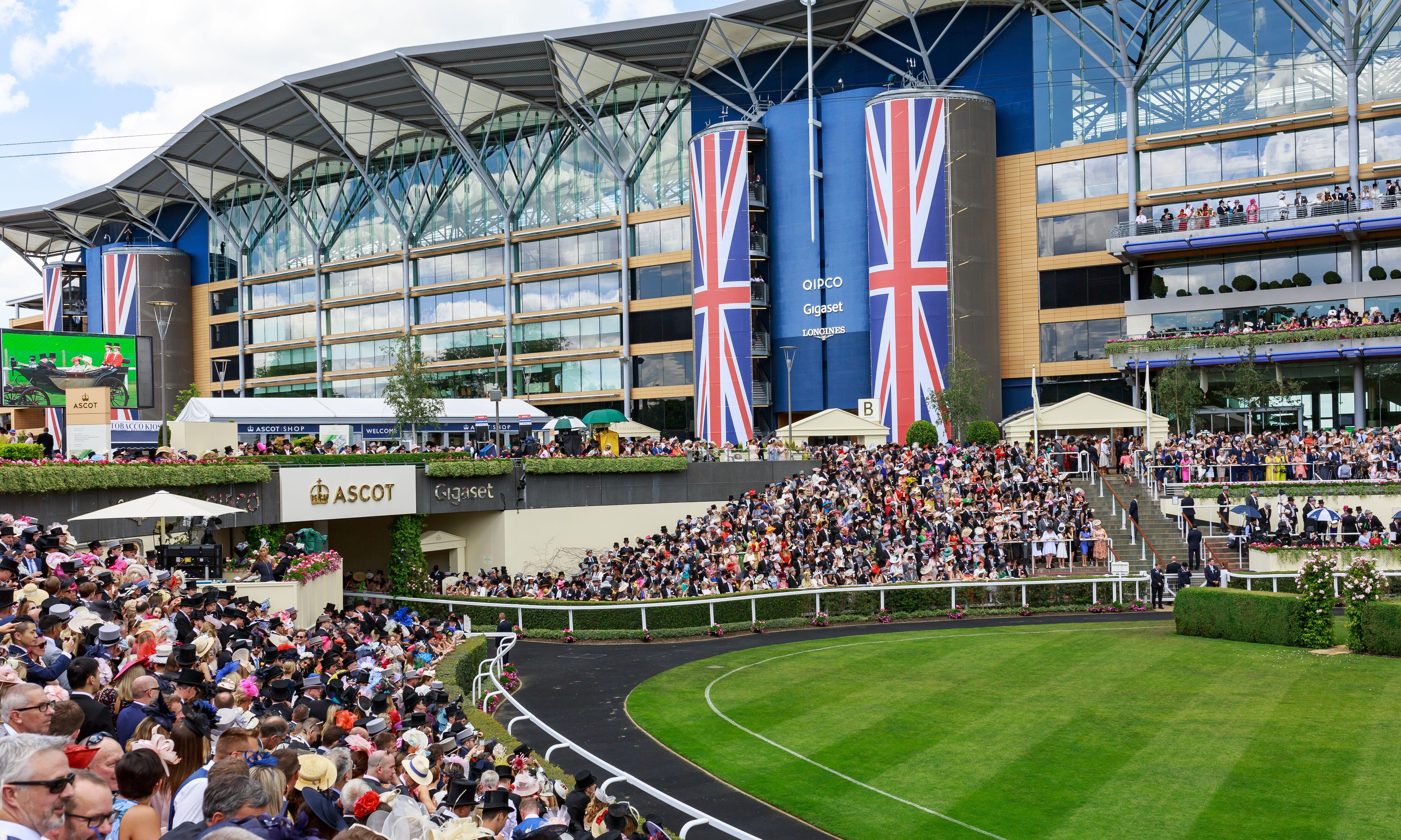 Talking Horses: Royal Ascot a hit on TV but live crowd figures fall
