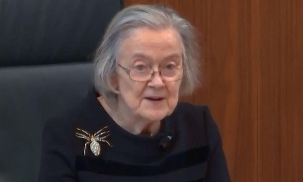 Say it with a brooch: what message was Lady Hale's spider sending?