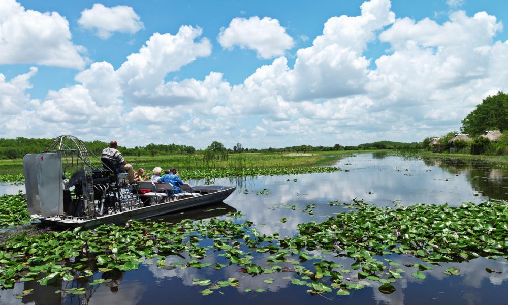 An air foil tour in the Everglades.