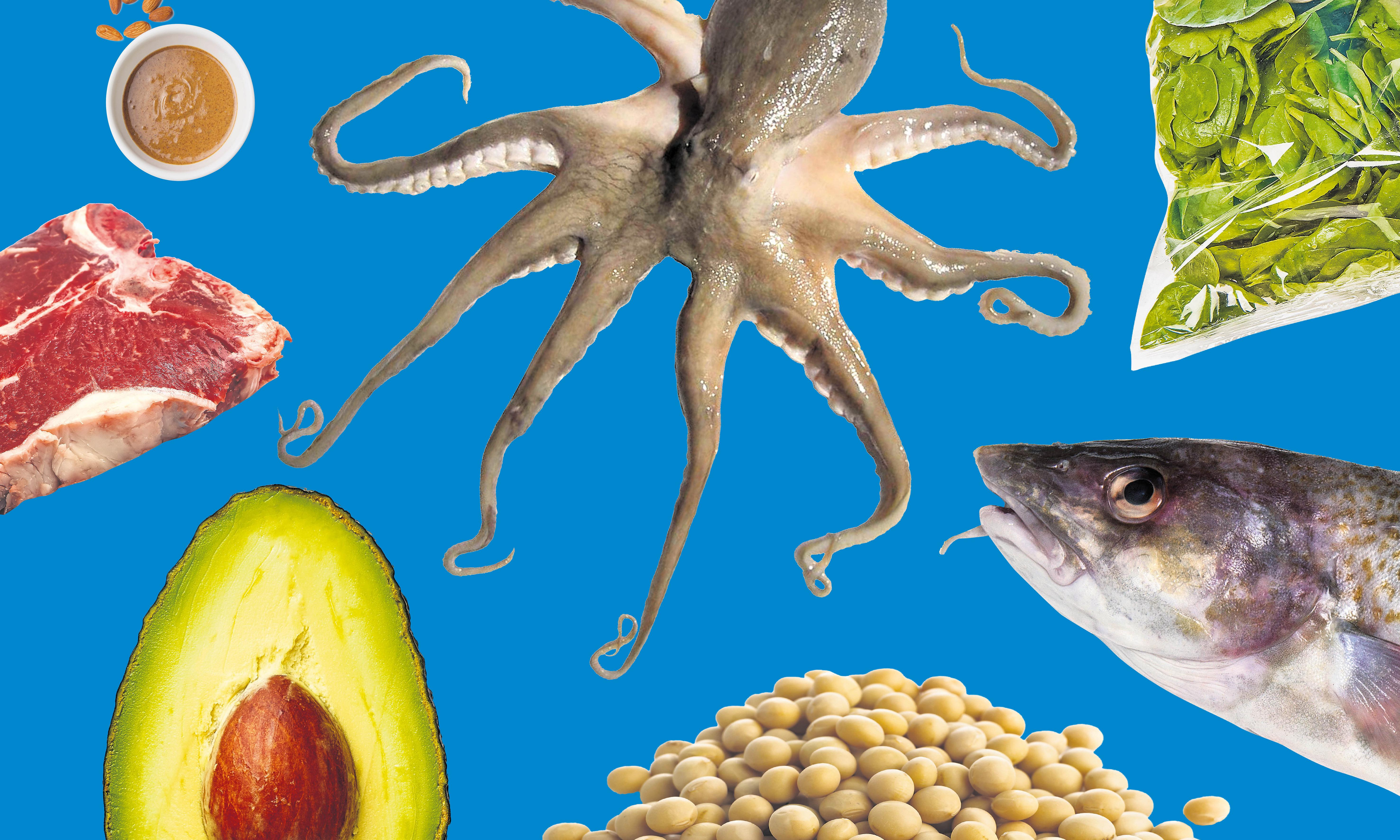 To eat or not to eat: 10 of the world's most controversial foods