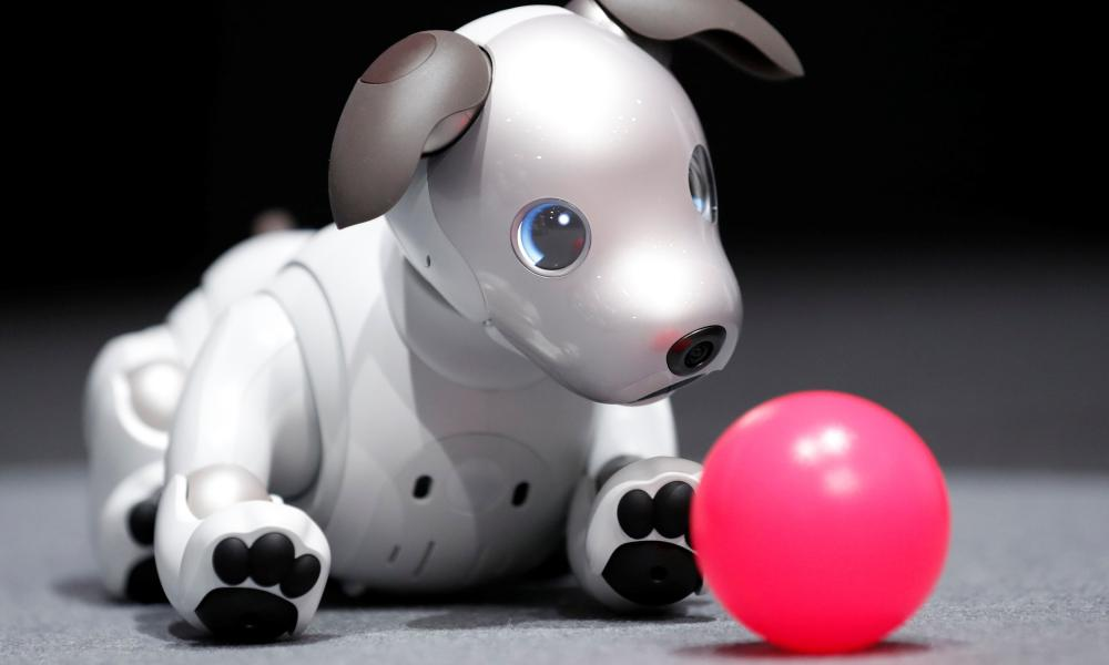 The Sony Aibo.
