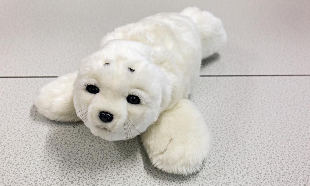 Paro, the therapeutic robot baby harp seal designed by Takanori Shibata in 2001.