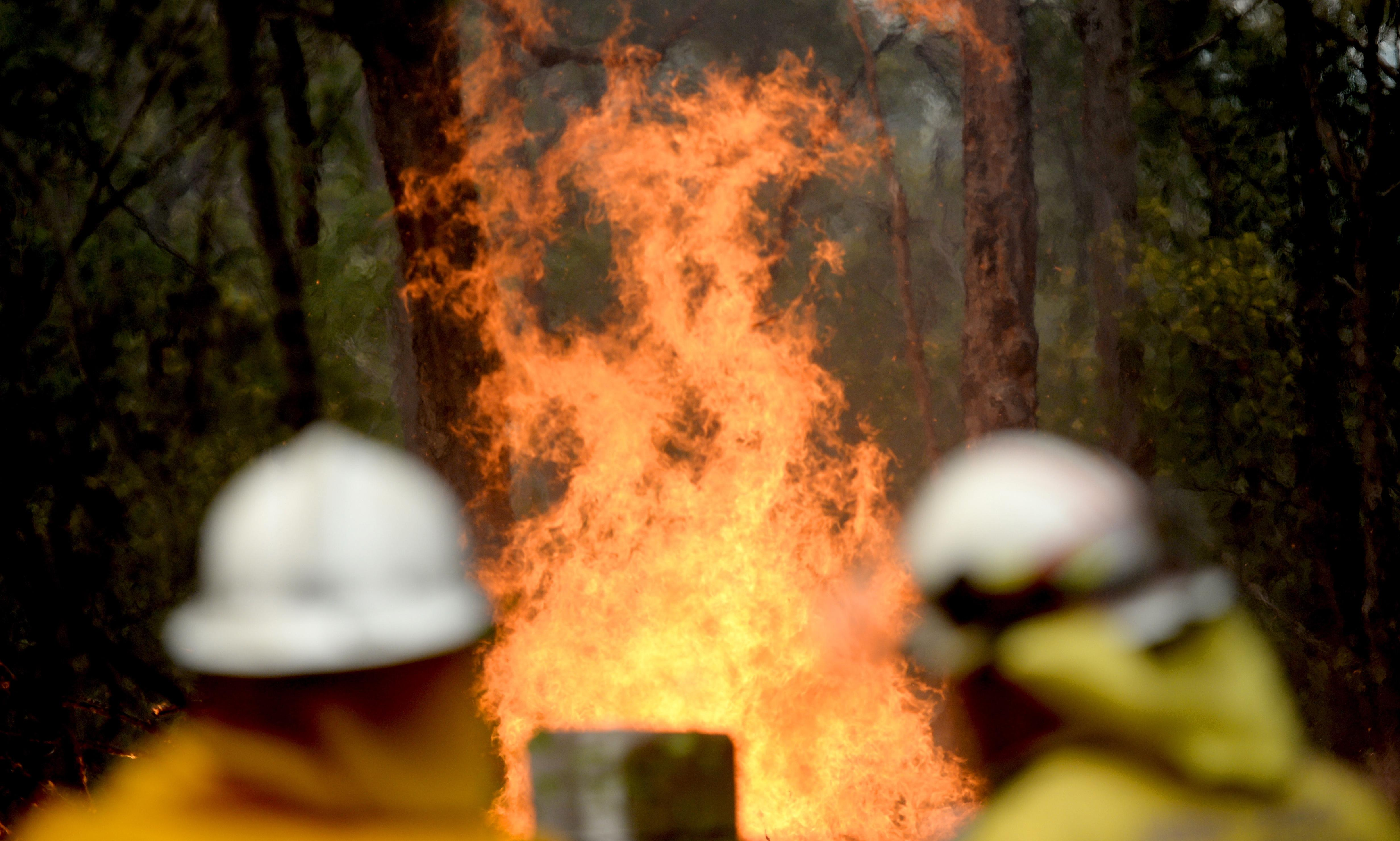 NSW and Qld fires: NSW fire devastation 'worse than expected', minister says as conditions set to worsen