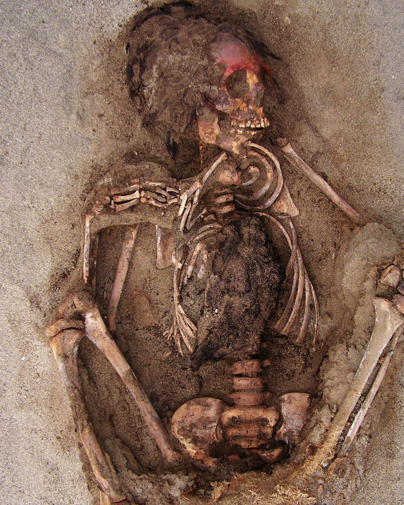Largest known child sacrifice site discovered in Peru