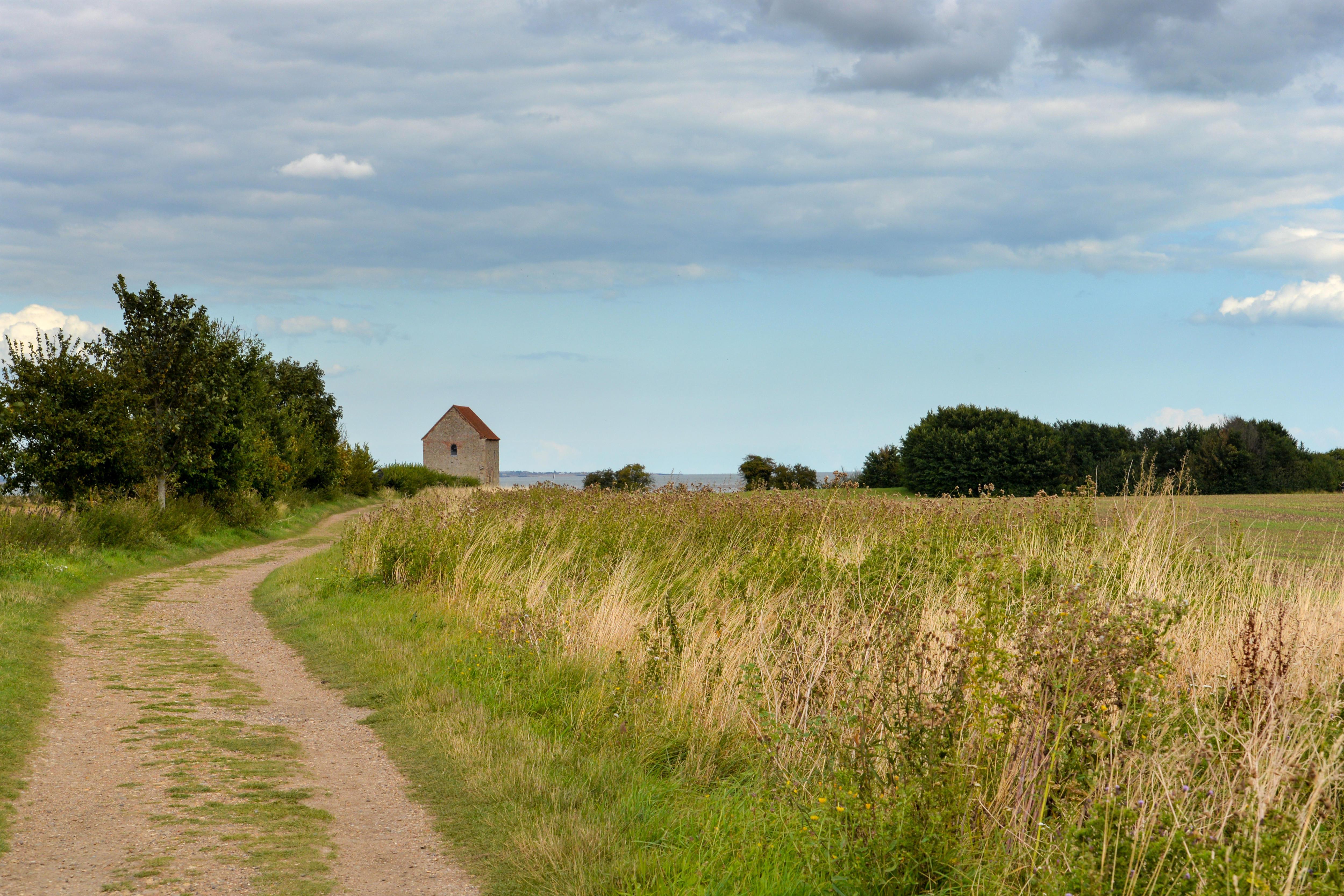 Eastern Eden: a utopian community in Essex