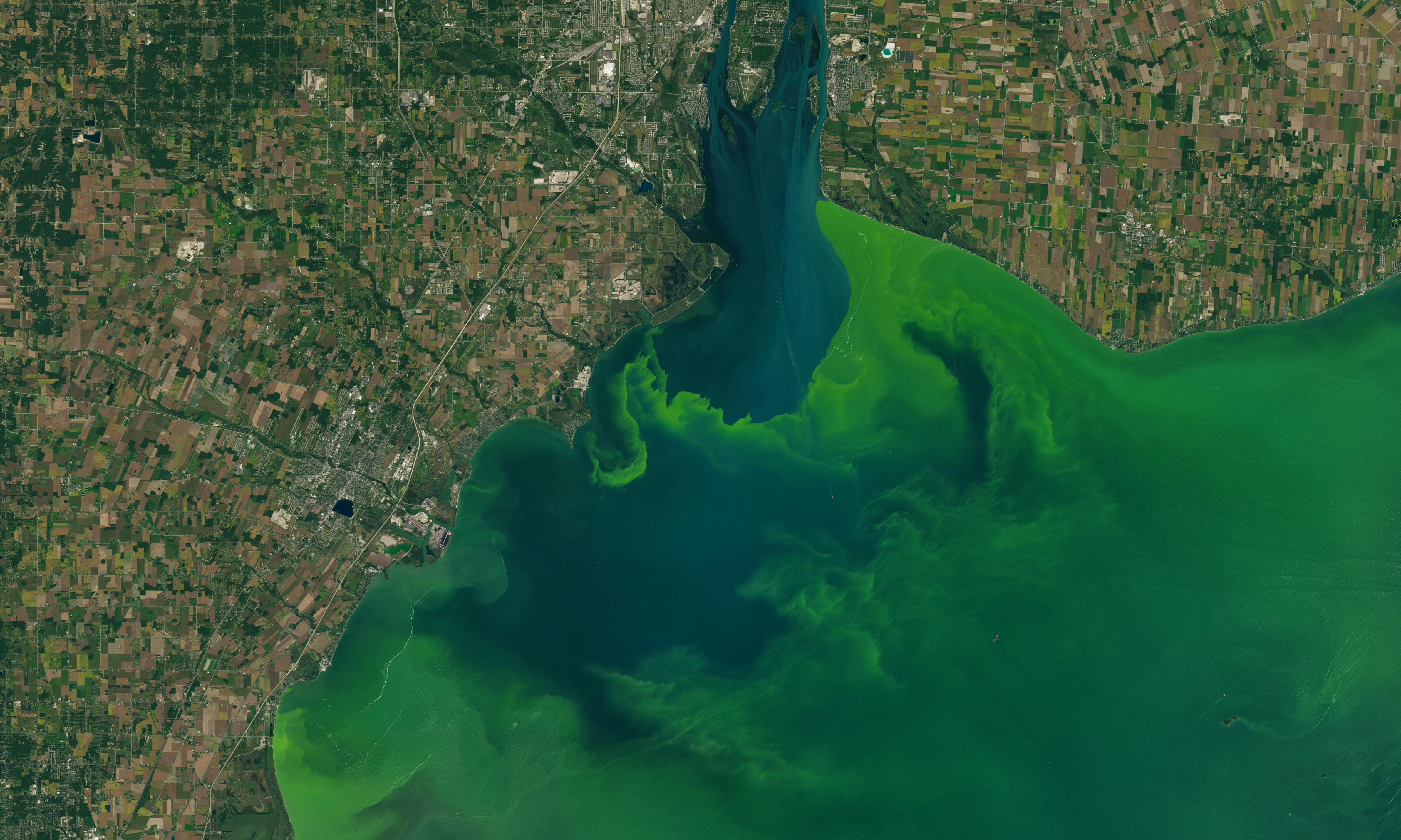 Fighting pollution: Toledo residents want personhood status for Lake Erie