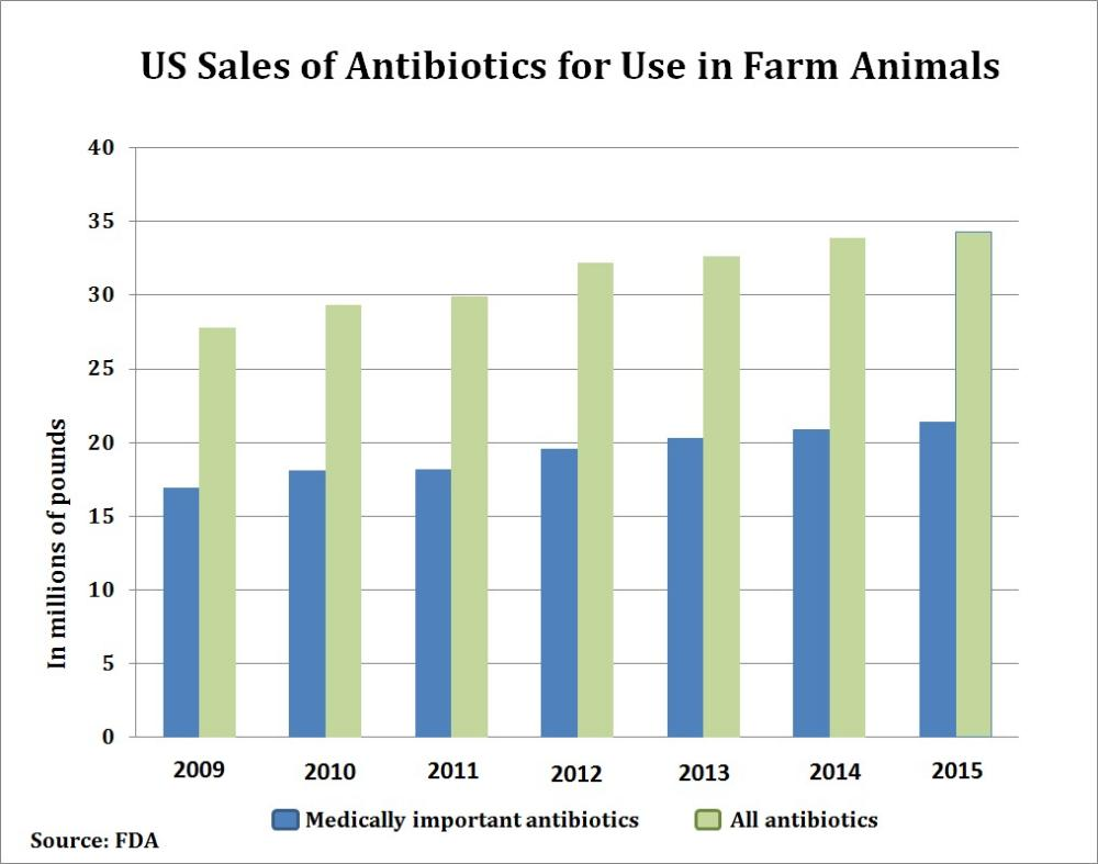 the use of antibiotics in animals Through responsible use of antibiotics,  zoetis defines responsible use of antibiotics in animals as: administering the medicine under the guidance of.