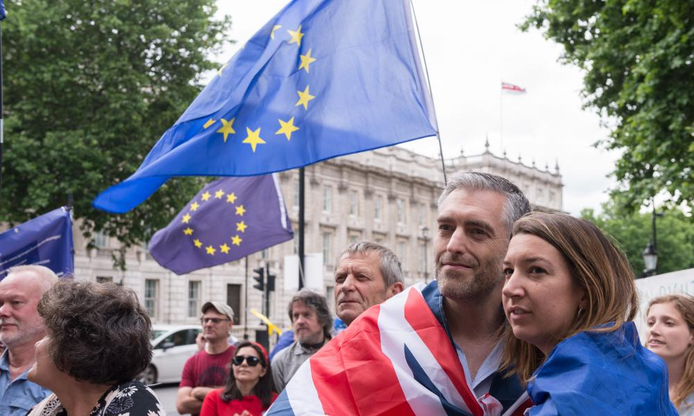 Pro-EU supporters