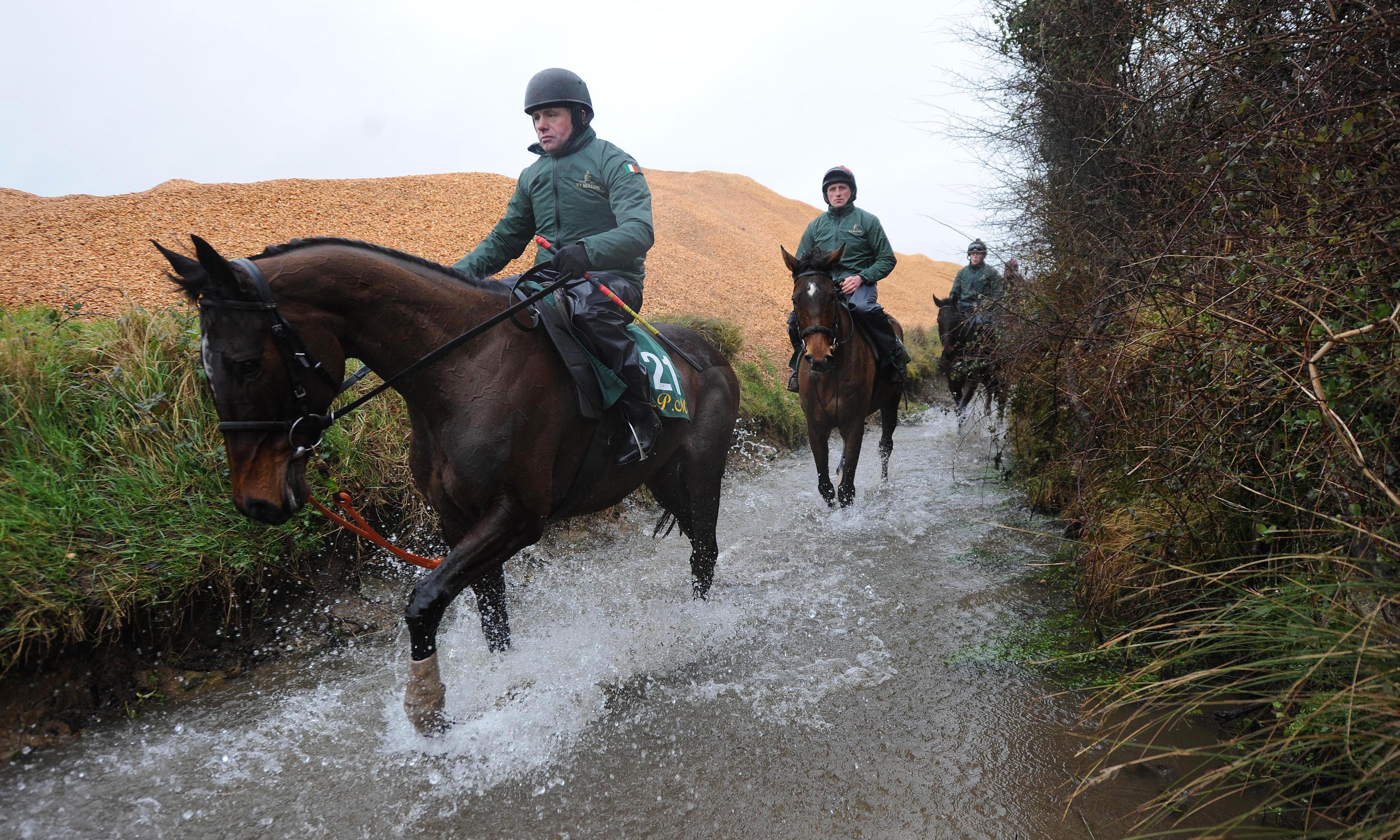 Talking Horses: Willie Mullins says new-look National is just grand