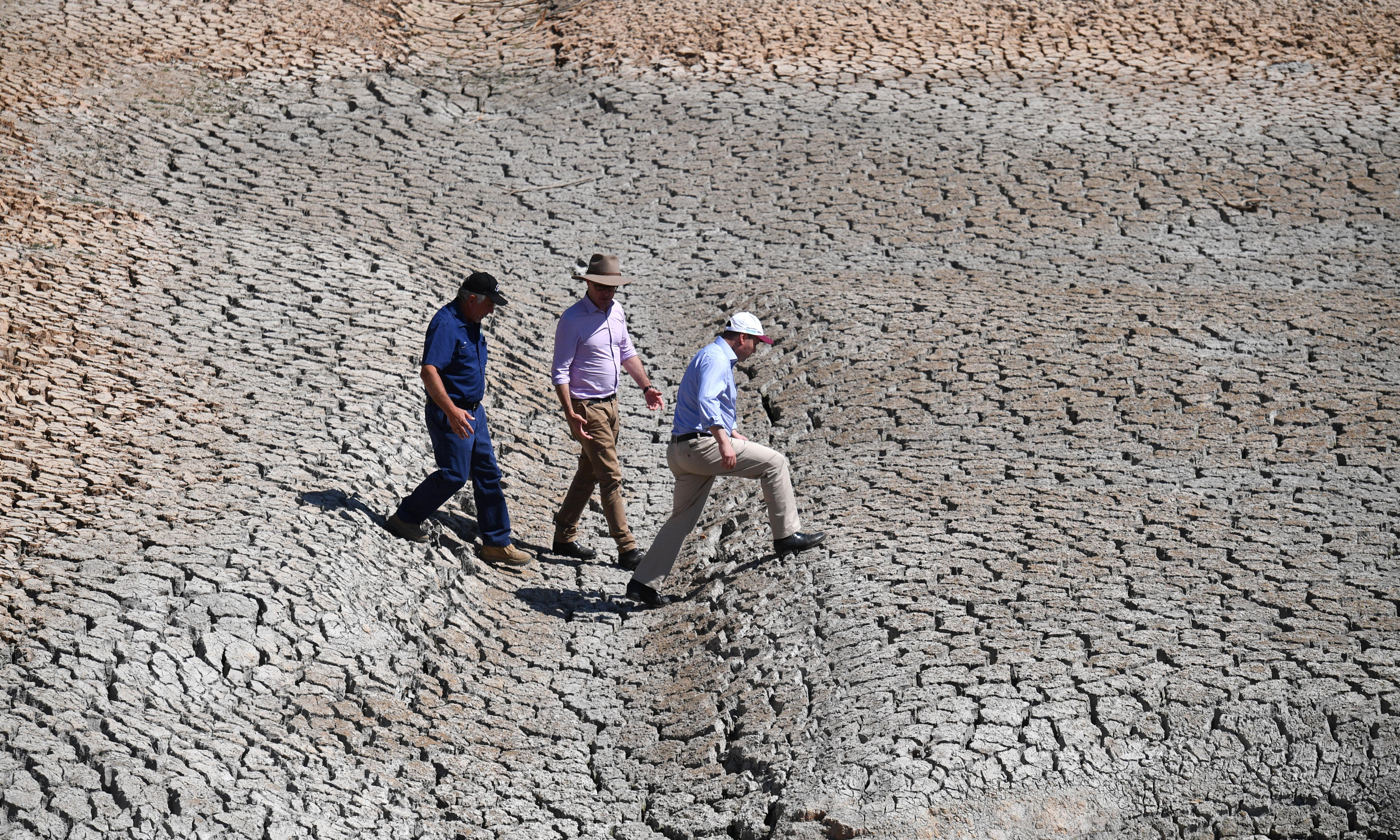 Farmers urge better preparation for 'the next drought' as Labor suggests war cabinet