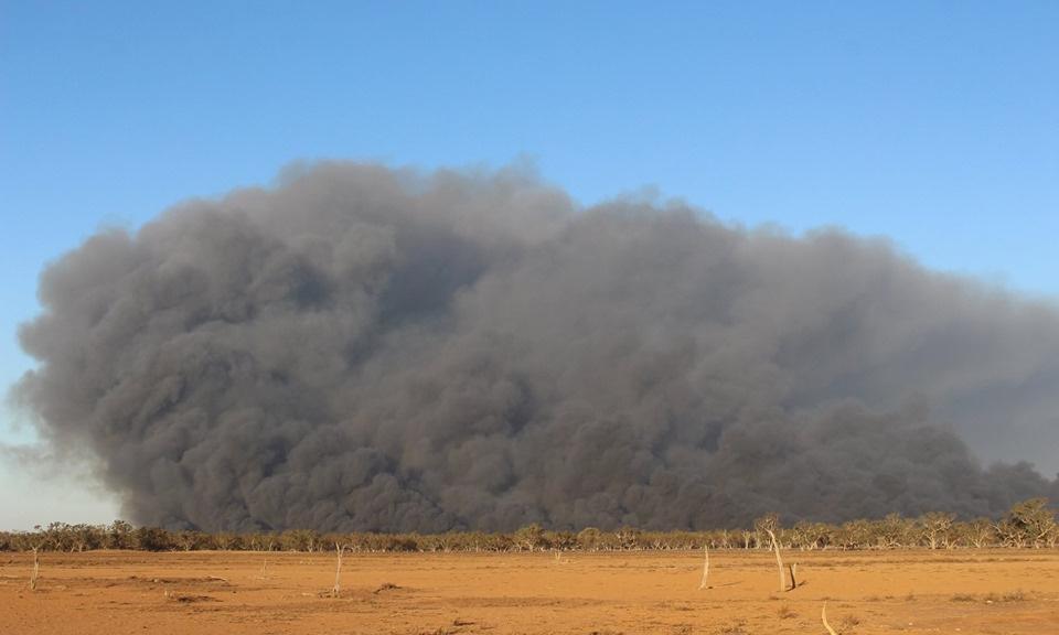 Macquarie Marshes bushfire burns 3,000 hectares of internationally recognised wetland