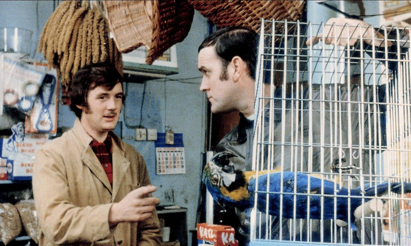 Monty Python at 50: a half-century of silly walks, edible props and dead parrots