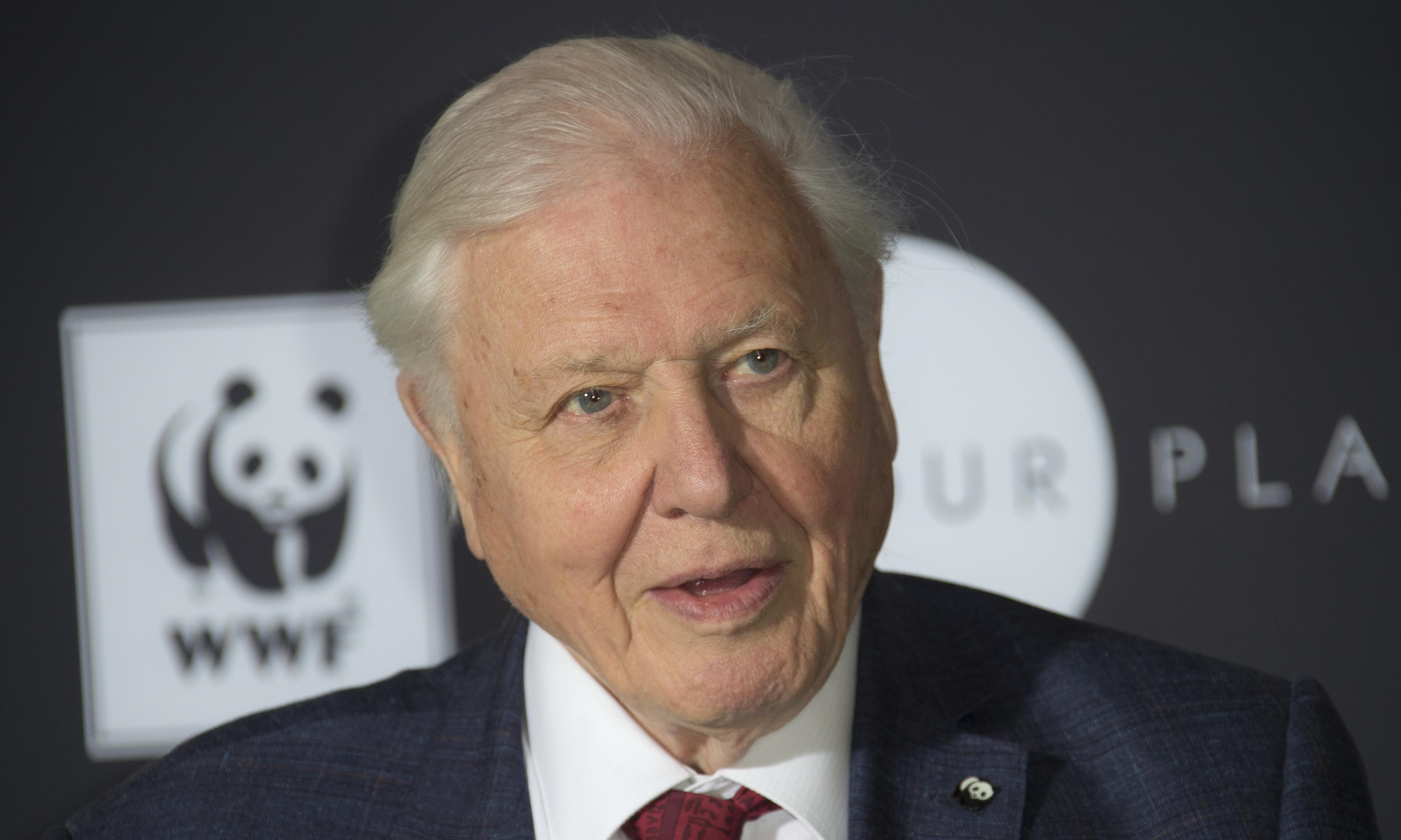 David Attenborough warns that humans have 'overrun the world'