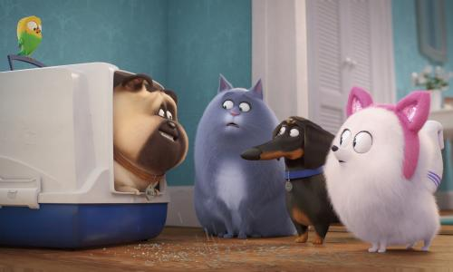 The Secret Life of Pets 2 review – return of the funny furry friends