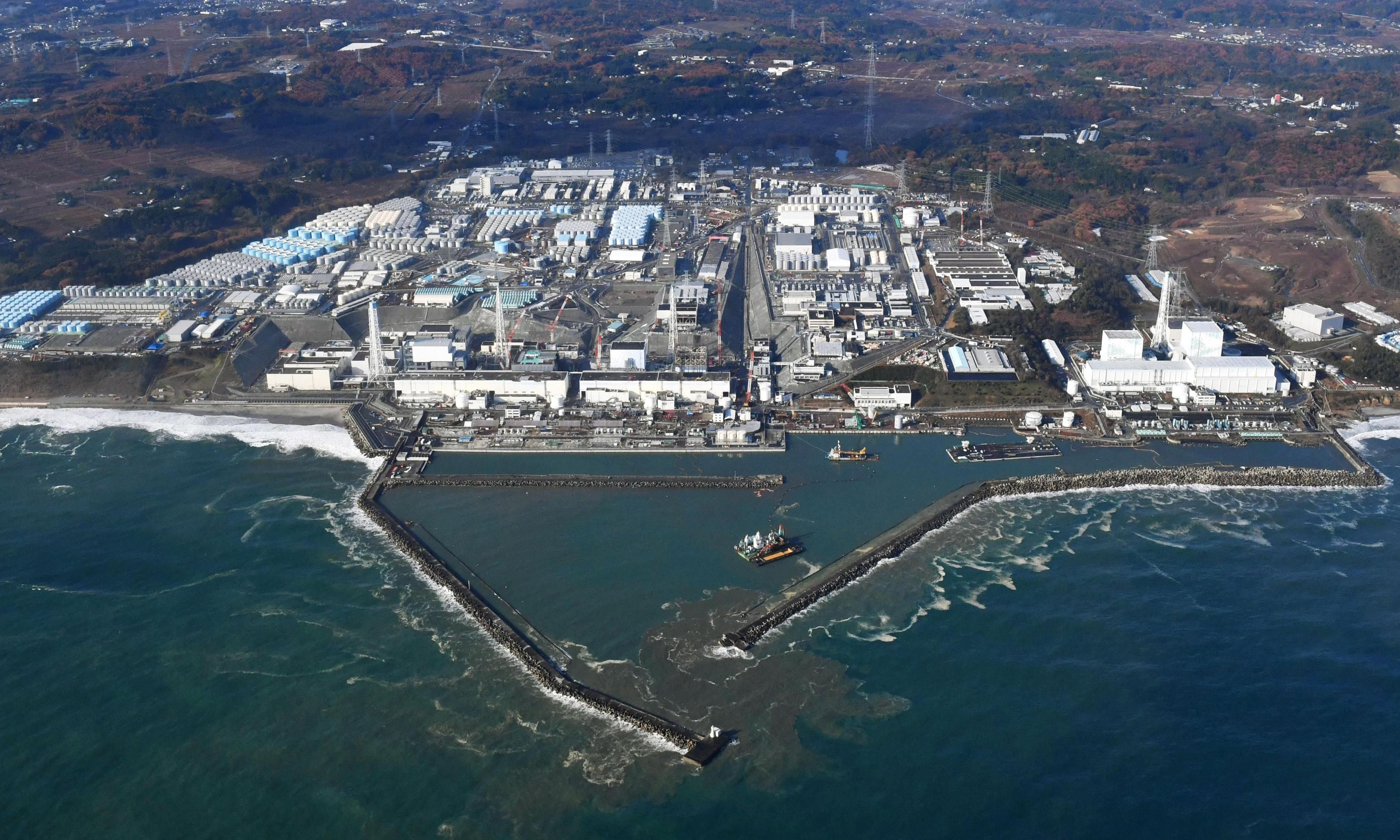Fukushima disaster: first residents return to town next to nuclear plant