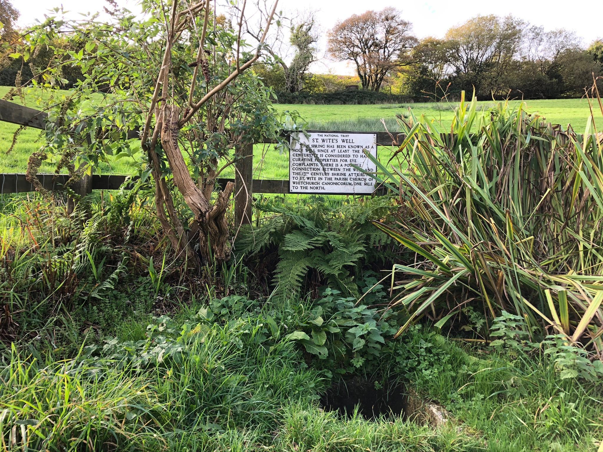 Country diary: St Wite's Well is a dangerous temptation to walkers