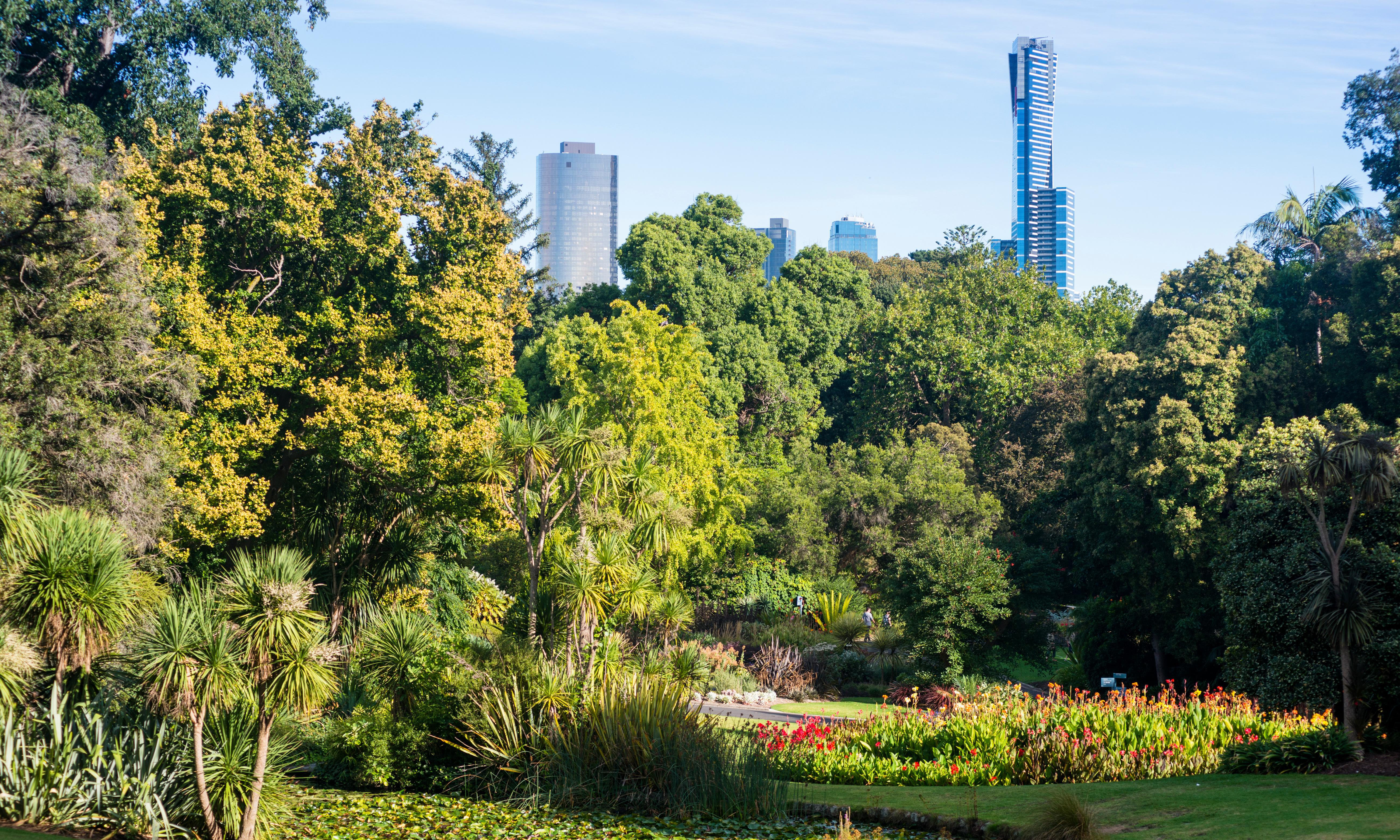 Australia's parks: tell us what you love and what makes you despair about urban green space