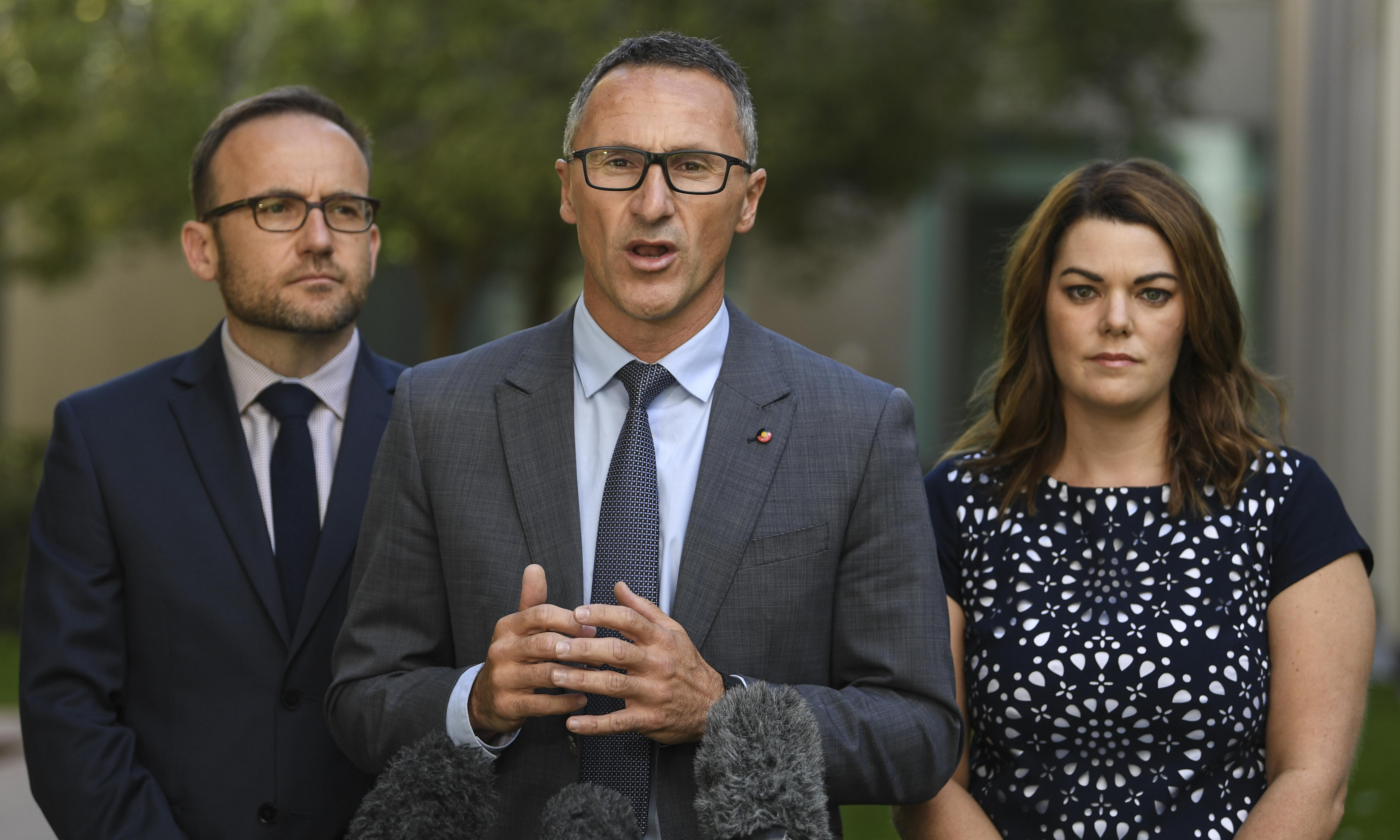 Greens propose supporting Labor climate policy in environment deal