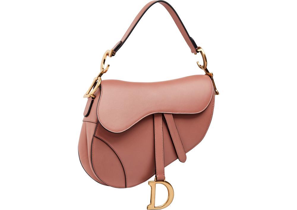 Christian Dior saddle bag AW18
