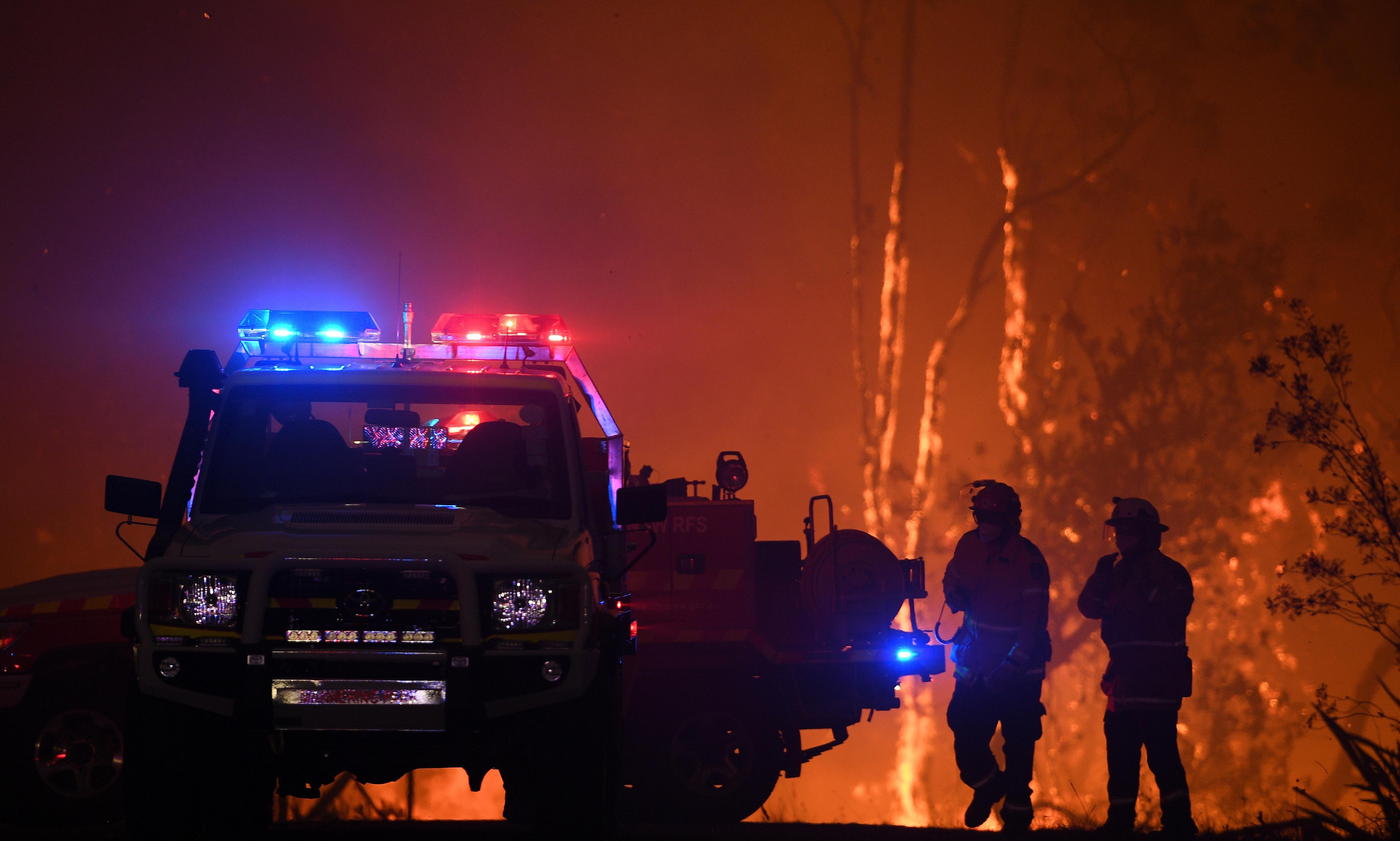 Australian government adviser urges threatened species overhaul after bushfires
