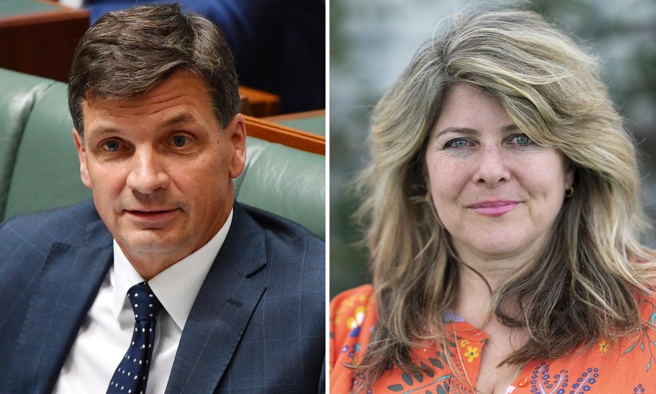 Naomi Wolf pursues Angus Taylor for 'formal' Hansard correction in Christmas tree row