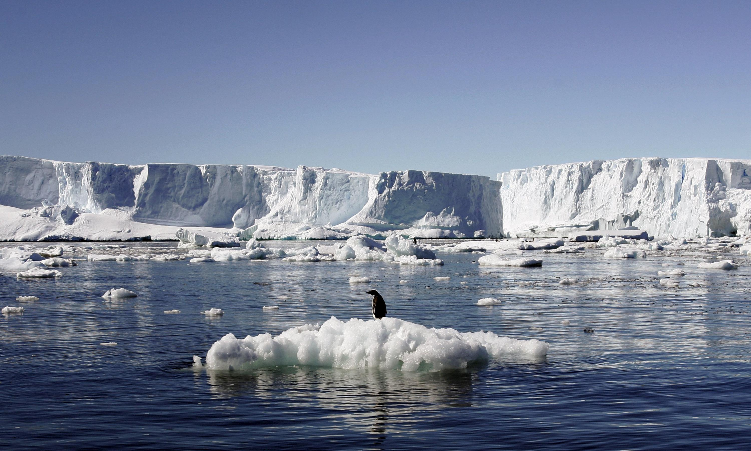 Antarctic marine park: conservationists frustrated after protection bid fails for eighth time