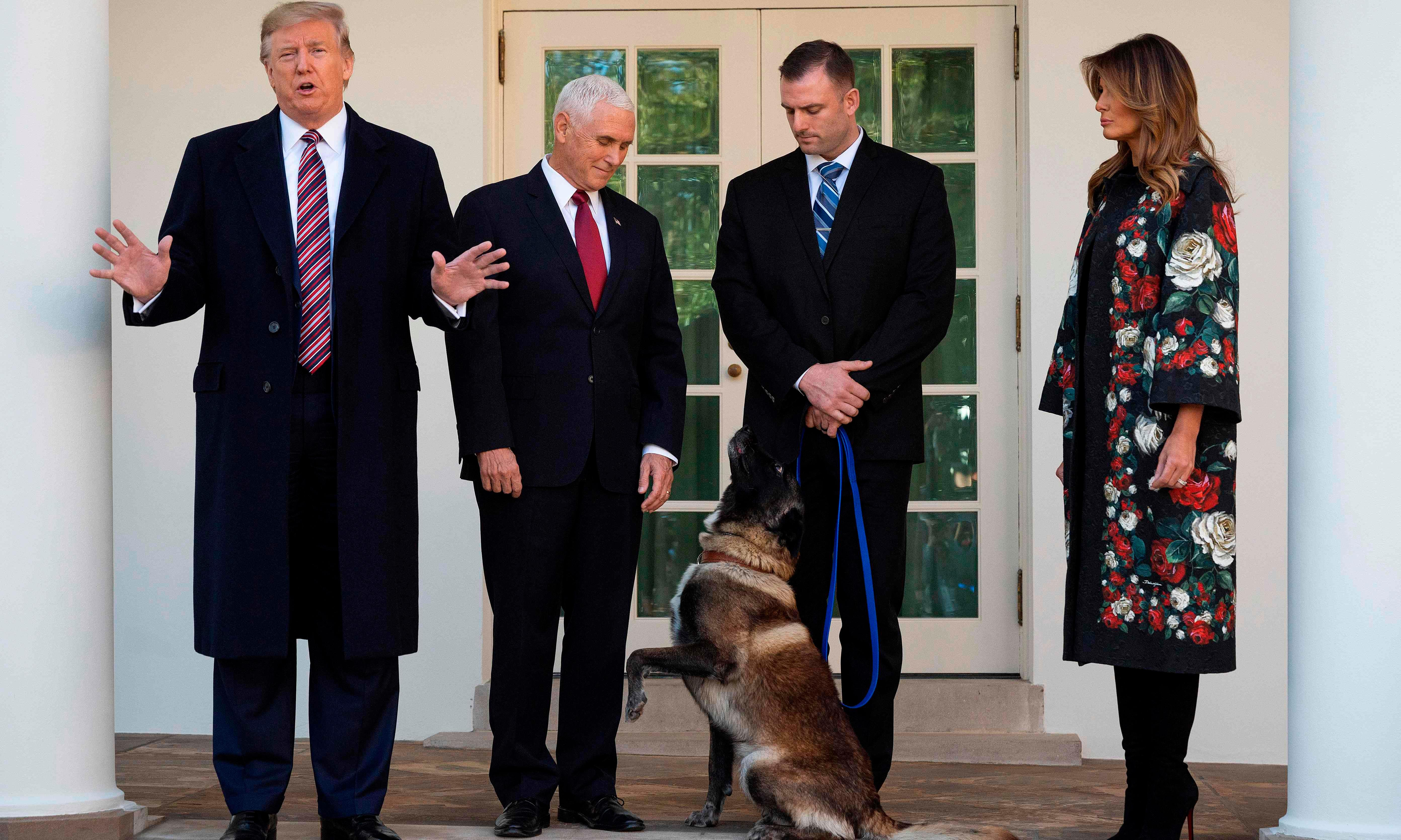 Down, boy: how Trump and Conan got embroiled in dog gender controversy