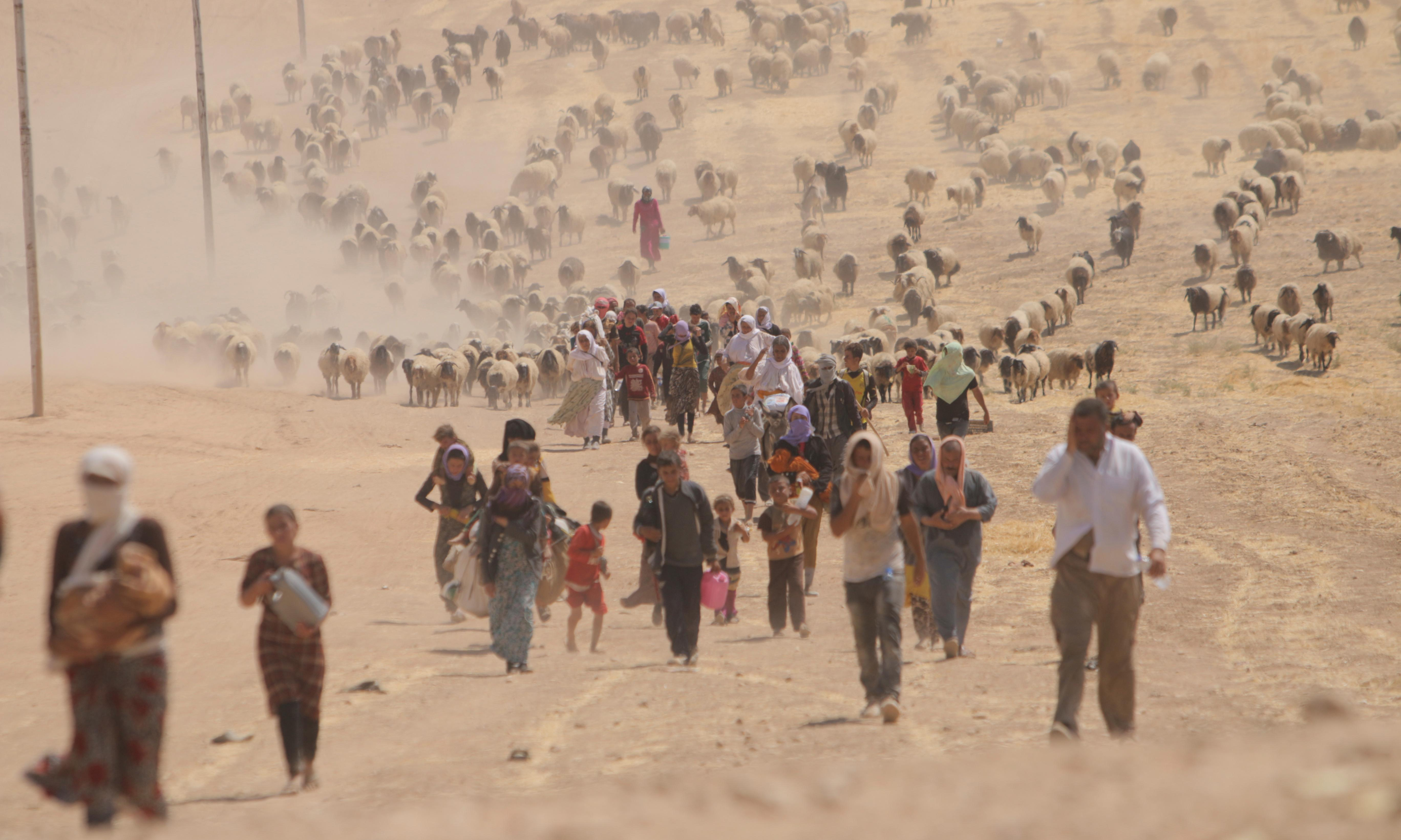 Yazidi leaders to allow Isis rape survivors to return with children