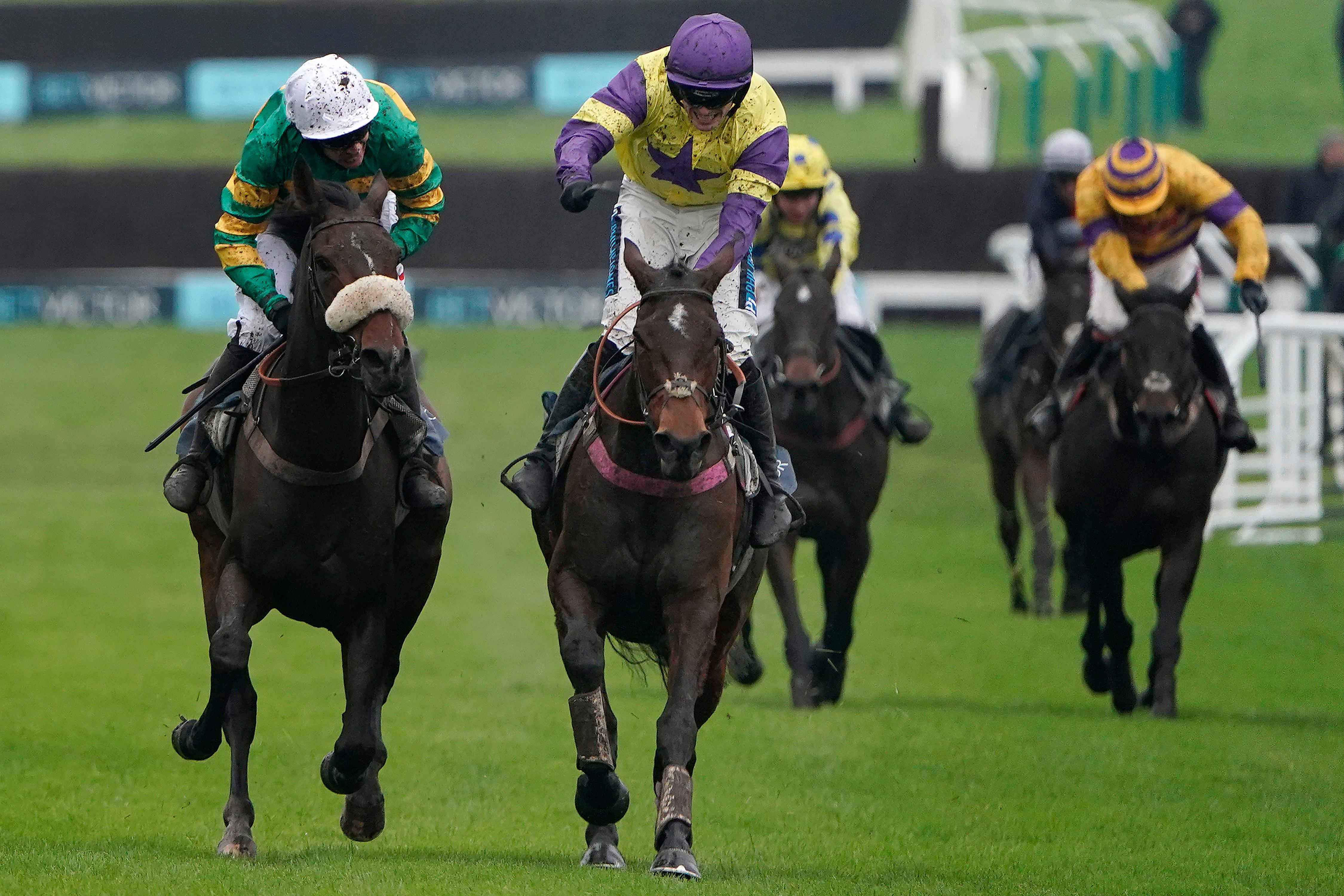 Happy Diva makes it second time lucky with BetVictor Gold Cup triumph