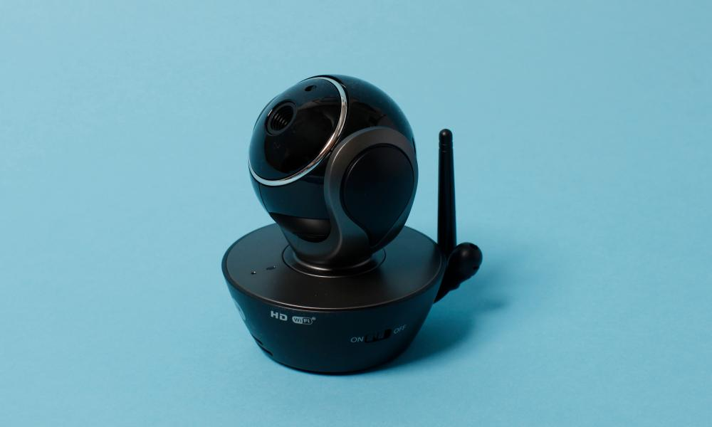 The Motorola Scout85: keeps an eye on your pet when you're away