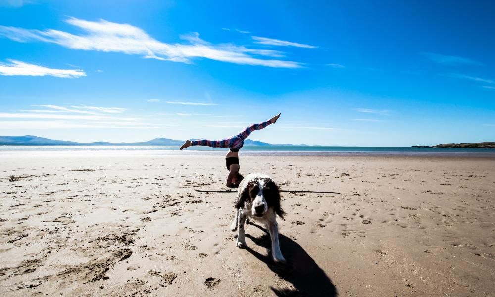 Woman doing yoga on the beach, her dog is with her. Zest Life Retreats, North Wales