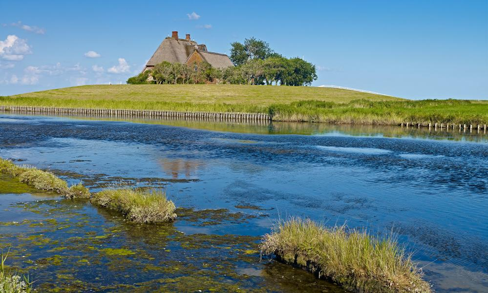 on the Halligen Islands houses are built on manmade mounds to keep them above the waterline.