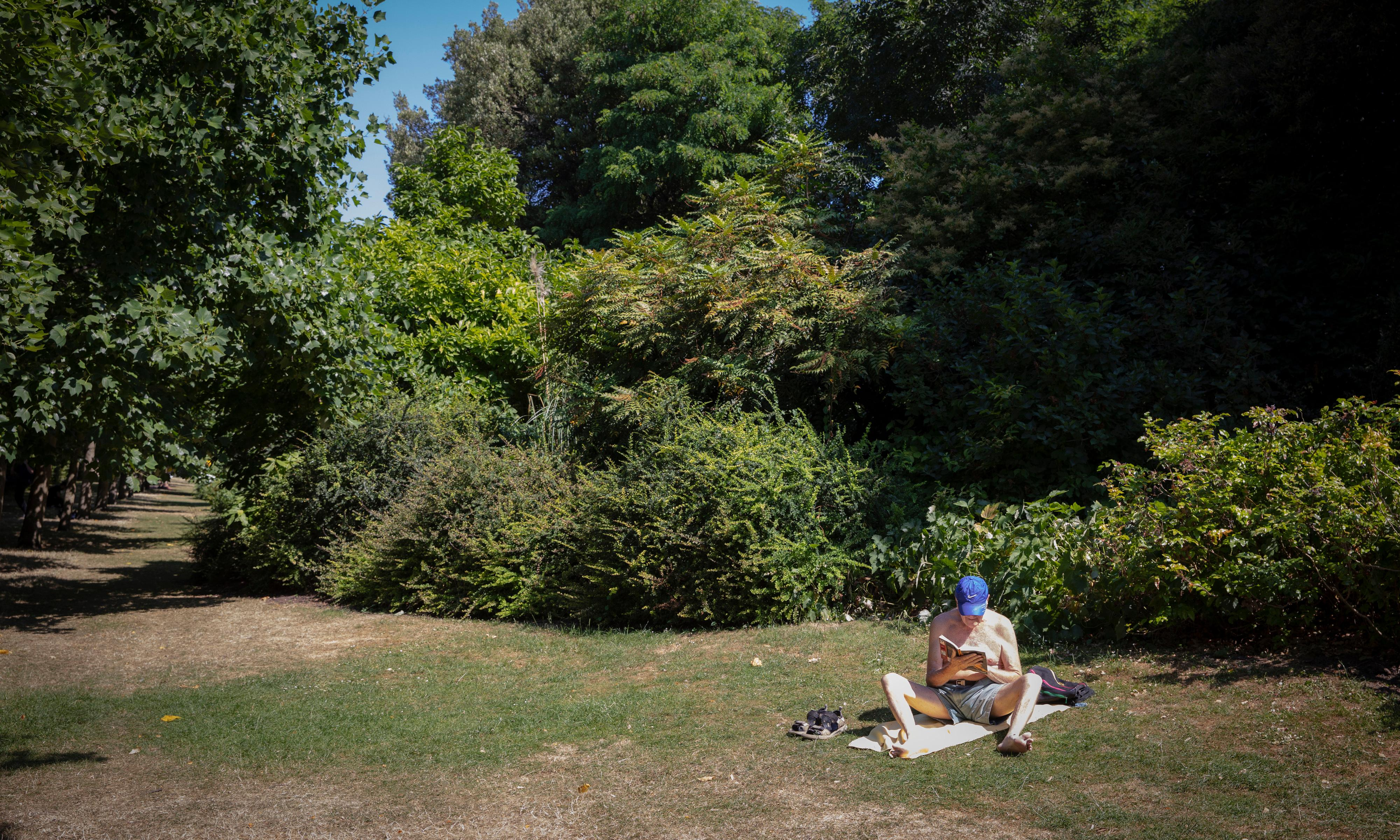 Plantwatch: the environmental reasons to save our at-risk parks