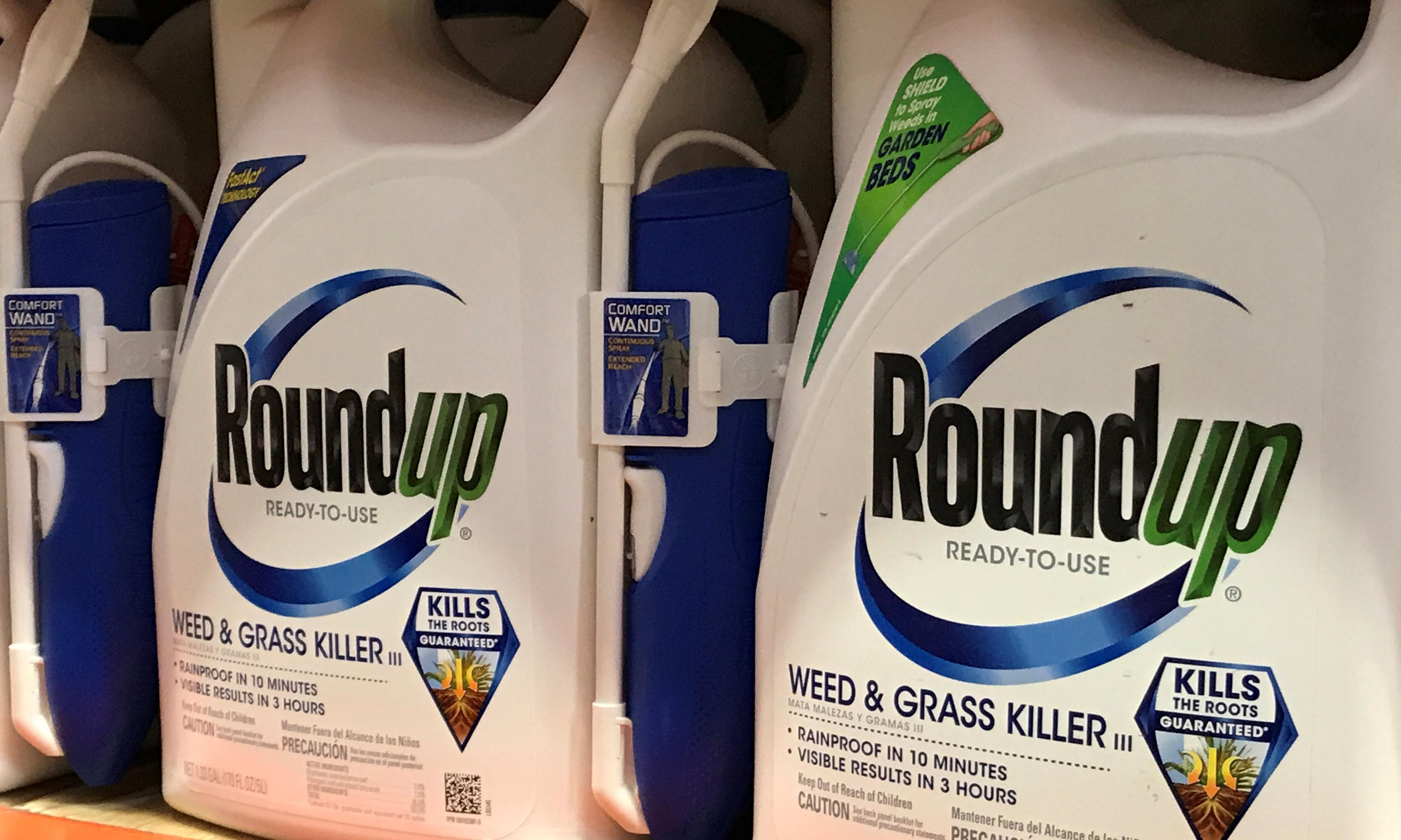 Formulations of glyphosate-based weedkillers are toxic, tests show
